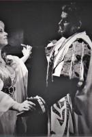 Debut in der Rolle Desdemona in Otello von G.Verdi, Jahr1982